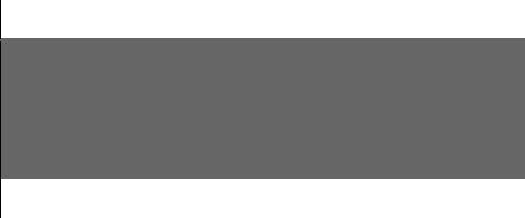 logo: NACCHO
